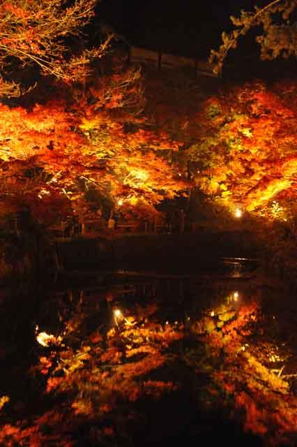 岩屋堂、紅葉が川に反射している写真99