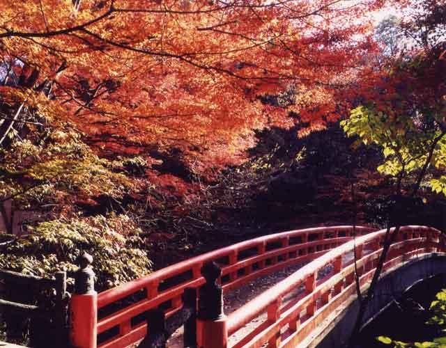 岩屋堂の赤い橋-99